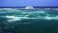 鳴門海峡の渦潮 69328004