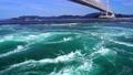 鳴門海峡の渦潮 69328009