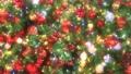 Christmas illuminations FIX glitter 30fr 69352947