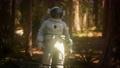 lonely Astronaut in dark forest 69497424