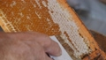 Scraper for the honeycomb. Work with a comb to print out a honeycomb. Mature honey. 69534486