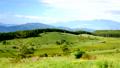 霧ヶ峰湿原植物群落 69553818
