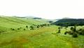霧ヶ峰湿原植物群落の空撮 69553819