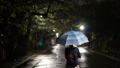 Woman with blue and white umbrella walking home alone at night wet dark street 69668558
