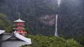 和歌山県 那智山青岸渡寺の三重の塔と那智の滝 69698572