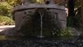 新大寺的御殿水 70010908