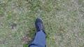 잔디를 걷는 남자 70031343