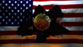 United States of America Flag being Ripped to reveal accurate model of Coronavirus CoVid19 70200344