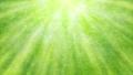 清新的绿色 70200840