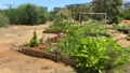 Special site with wooden boxes, where primary school students may learning about agriculture and farming 70360259