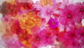 盛開的花朵_水彩風格_紅色_白皮書紋理 70366927