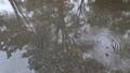 雨 公園の水たまり 70439851