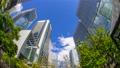 도쿄 시나가와 빌딩 시간 경과 녹색 고개 어안 틸드 다운 70809897
