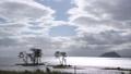 滋賀県長浜市 湖北野鳥センターからの琵琶湖の眺め 71029826