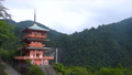 和歌山県 那智山青岸渡寺の三重の塔と那智の滝 71029827