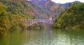 只見線の第一橋梁の紅葉と列車 71042930