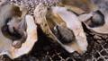 焼き牡蠣【秋の味覚】 71062739