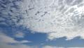 푸른 하늘, 아름다운 가을의 구름. 계절 단풍 물드는 무렵. 단풍 담쟁이 黄ばむ. 시간 경과 동영상. 하늘의 배경 소재 71108905