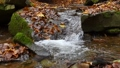 Slow motion of a river cascading peacefully down a small, scenic waterfall 71308614