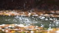 Slow motion of a river cascading peacefully down a small, scenic waterfall 71308616