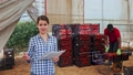 Female farmer working with papers in warehouse, afro male worker carrying crates with tomato harvest 71537752