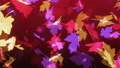 Autumn falling colorful leaves on purple stylized looping background 71547975