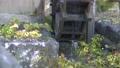 Water wheel 2 71623852