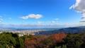 秋の徳島県徳島市街並み(眉山公園から2020年11月撮影) 71645127
