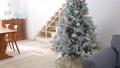 房間裡裝飾的聖誕樹(狗) 71799074