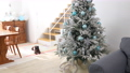 房間裡裝飾的聖誕樹(狗) 71799075