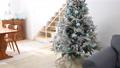 裝飾在房間裡的聖誕樹(移動攝影) 71799076