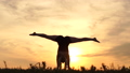 Silhouette of the girl stands on her arms and legs in twine , action at sunset. 71869185
