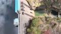 Kyoto Ono Dam Park Autumn Leaves Maple Aerial Wind Park 4K Rainbow Lake 71993068