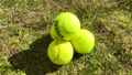 Tennis ball to play 72086658