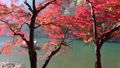 river boat ride in arashiyama kyoto japan during autumn fall foliage  72270212