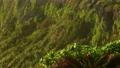 在日出後的早晨的陽光中照耀的宮古島上的東平谷海岬岬的景色 72432240
