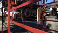 Sanada Shrine crowded with people [Ueda Castle Ruins Park] 72829694