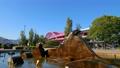 ポートアイランド北公園の噴水 72860276