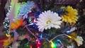 東京都港区芝公園のクリスマスイルミネーション 72862060