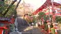 [Kyoto] Kurama Temple 72878355
