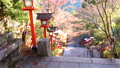 [Kyoto] Kurama Temple 72878360