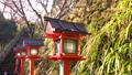 [Kyoto] Kurama Temple 72878361