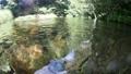 渓流の水流にカメラを沈めるイメージ 73009708