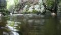 渓流の水流にカメラを沈めるイメージ 73009711