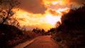 【冬】雪が積もった夕方の歩道に夕日が差し込む様子 73114625