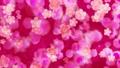 ピンク桜 水彩風背景 ループ 73137872