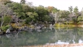 아라시야마의 일본 정원 73175262