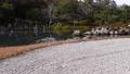 아라시야마의 일본 정원 73175278
