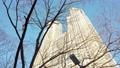 東京都新宿区西新宿の高層ビル群の街並み 73185671