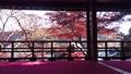【秋】柳谷観音 上書院 73265195